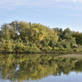 В река Росица