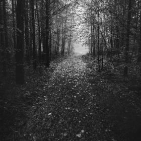 Пътя към есента