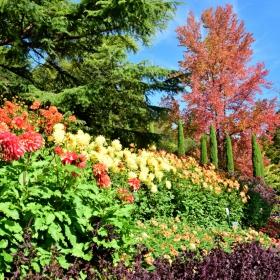 Цветната градина на Майнау