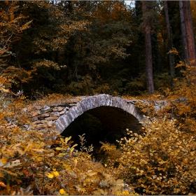 Сред есенния лес...сгушена древност
