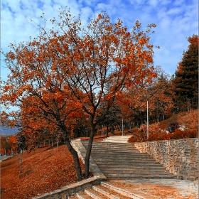Есенна стълба