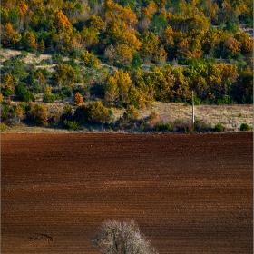 С дъх на късна есен