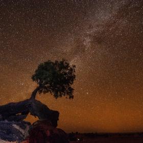 Пустинна нощ