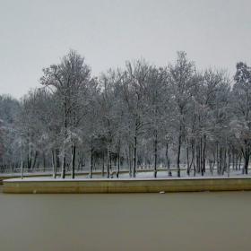 Зимни гледки в северен парк
