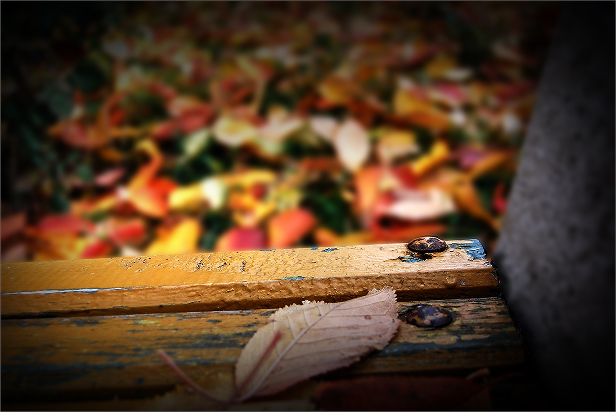 имало едно време.............есен