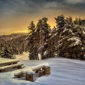 В зимата