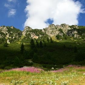 В планината..