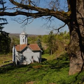 Манастирската църква и 300-годишния летен дъб