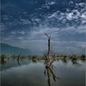 В средата на езерото