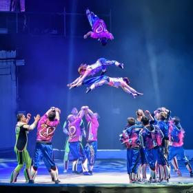 Большой московский цирк