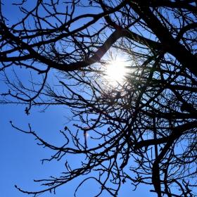 Поглед към слънцето