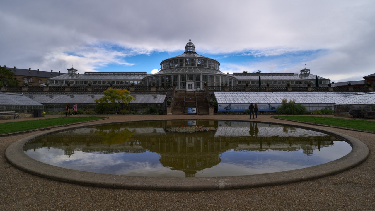 Ботаническа градина