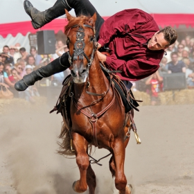 Уменията на ездача... и търпението на коня...