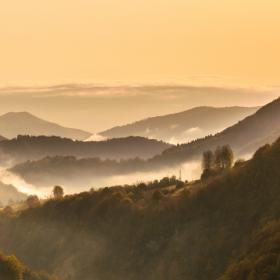 Утро в Родопа планина
