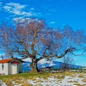 Плана - Параклис Свети Киприян