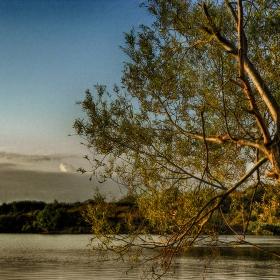 Край съненото езеро