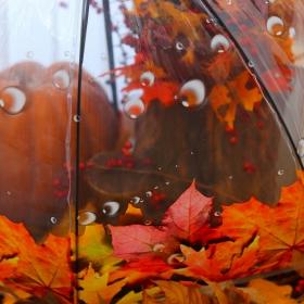 Есента у дома