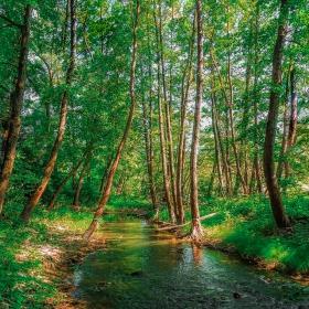 река Луда Камчия