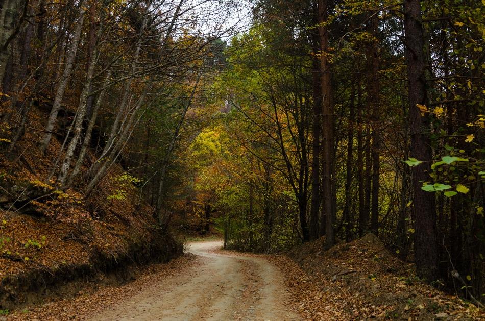 Път в планината