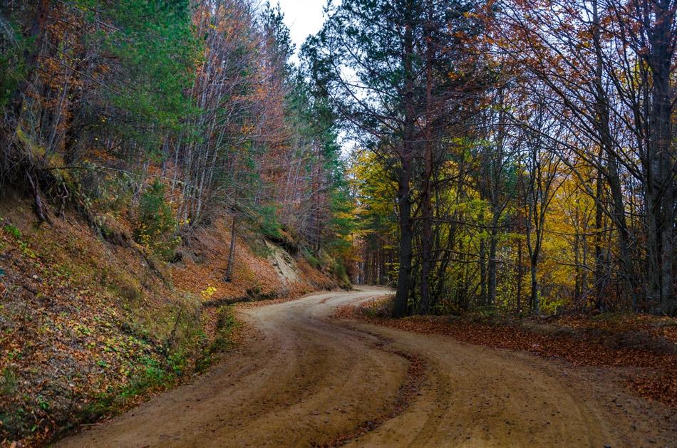 Път в планината-2