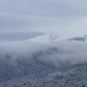 Мъгливата планина