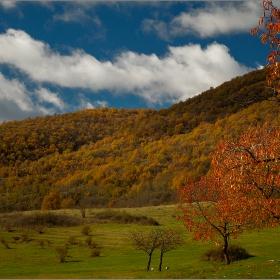 Забравени кадри на есенна тема