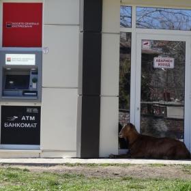 Пазителката на банкомати