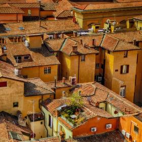 Над покриви и дворчета
