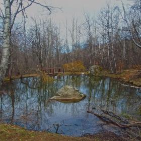 Дендрариум - Предпролетно