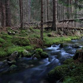 Песента на реката