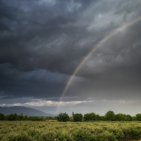 И не забравяй, че след всяка буря идва дъга!