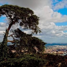 Поглед от Palacio da Pena
