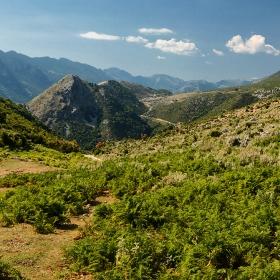 Из  планините на Епир