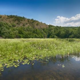 Езерото с водните лилии край село Летовник