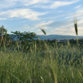 Младежки хълм, Пловдив