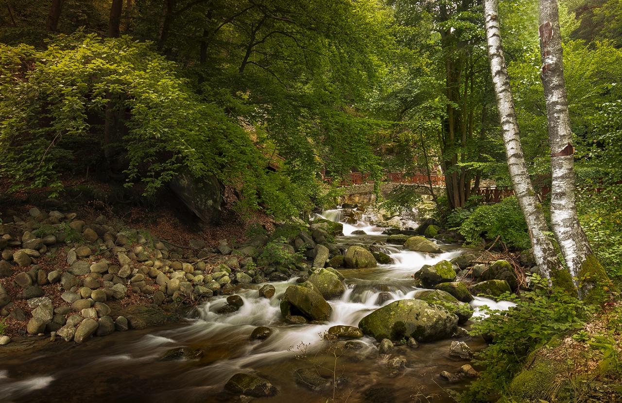 Стара река
