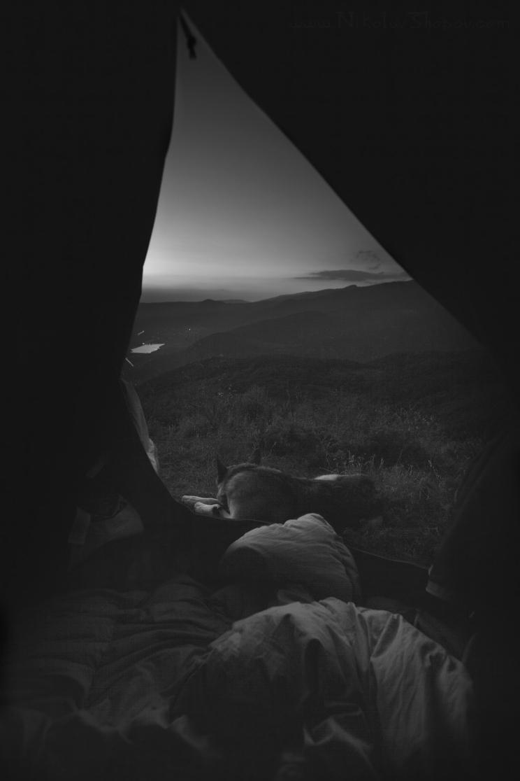 Утро в планината