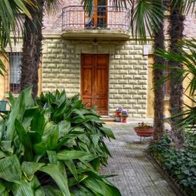 Входната алея под палмите