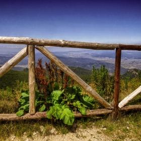 Край връх Ястребец