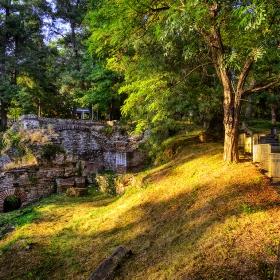 В парка, край руините