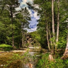 Странджанска гора