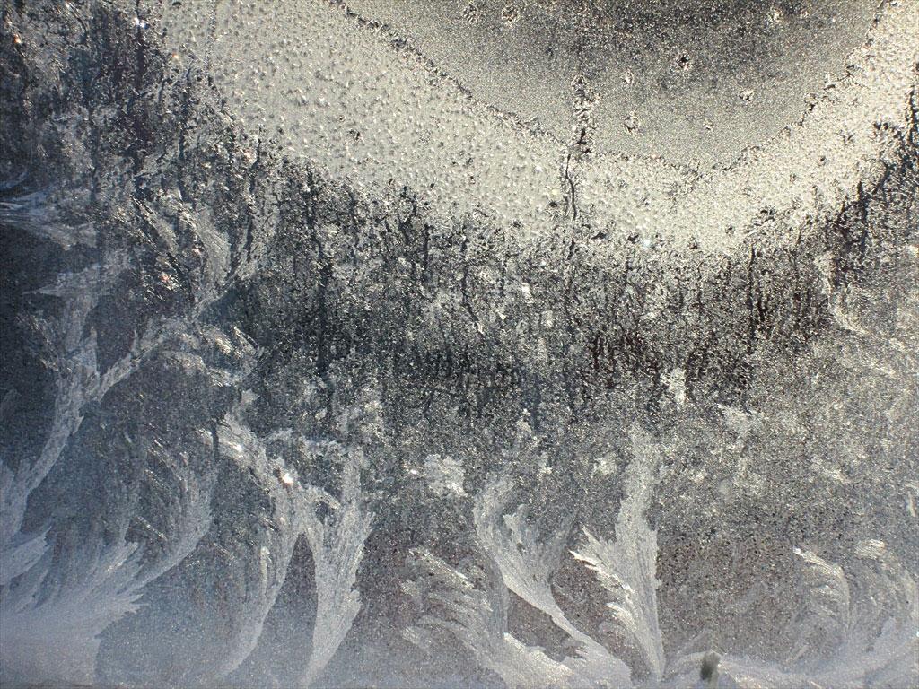 Студът рисува... еленови рога