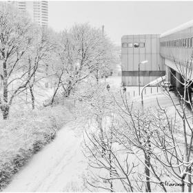 Снежно градско