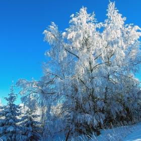 Етюд в бяло и синьо