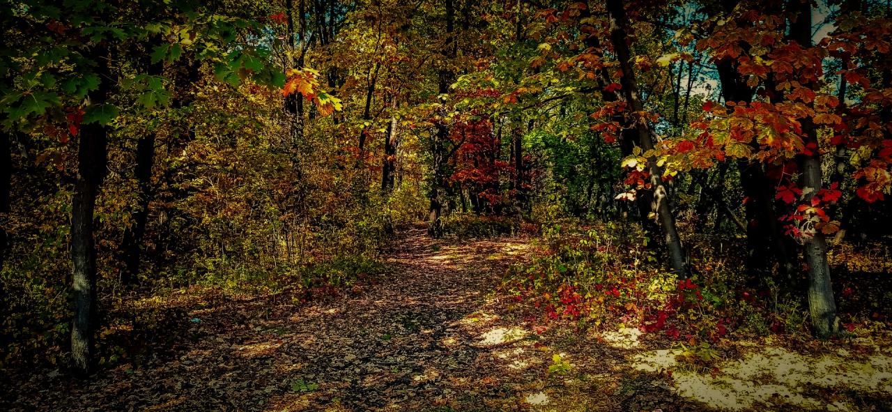Есенни разходки!