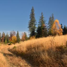 Есен в Берковска планина
