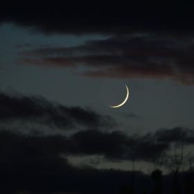 Младата Луна между Венера и Юпитер на 28.11.2019г.