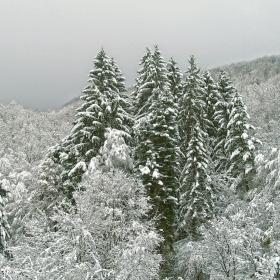 Зимен пейзаж 3