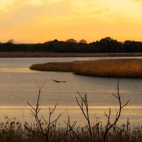 Езеро Мандра