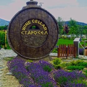 Wine Cellar - Старосел